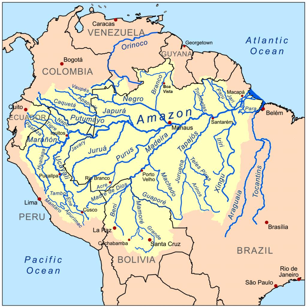 Las selvas tropicales abarcan un enorme territorio en America del Sur. La selva del Amazonas es tan extensa que llega a abarcar territorios de hasta nueve países.