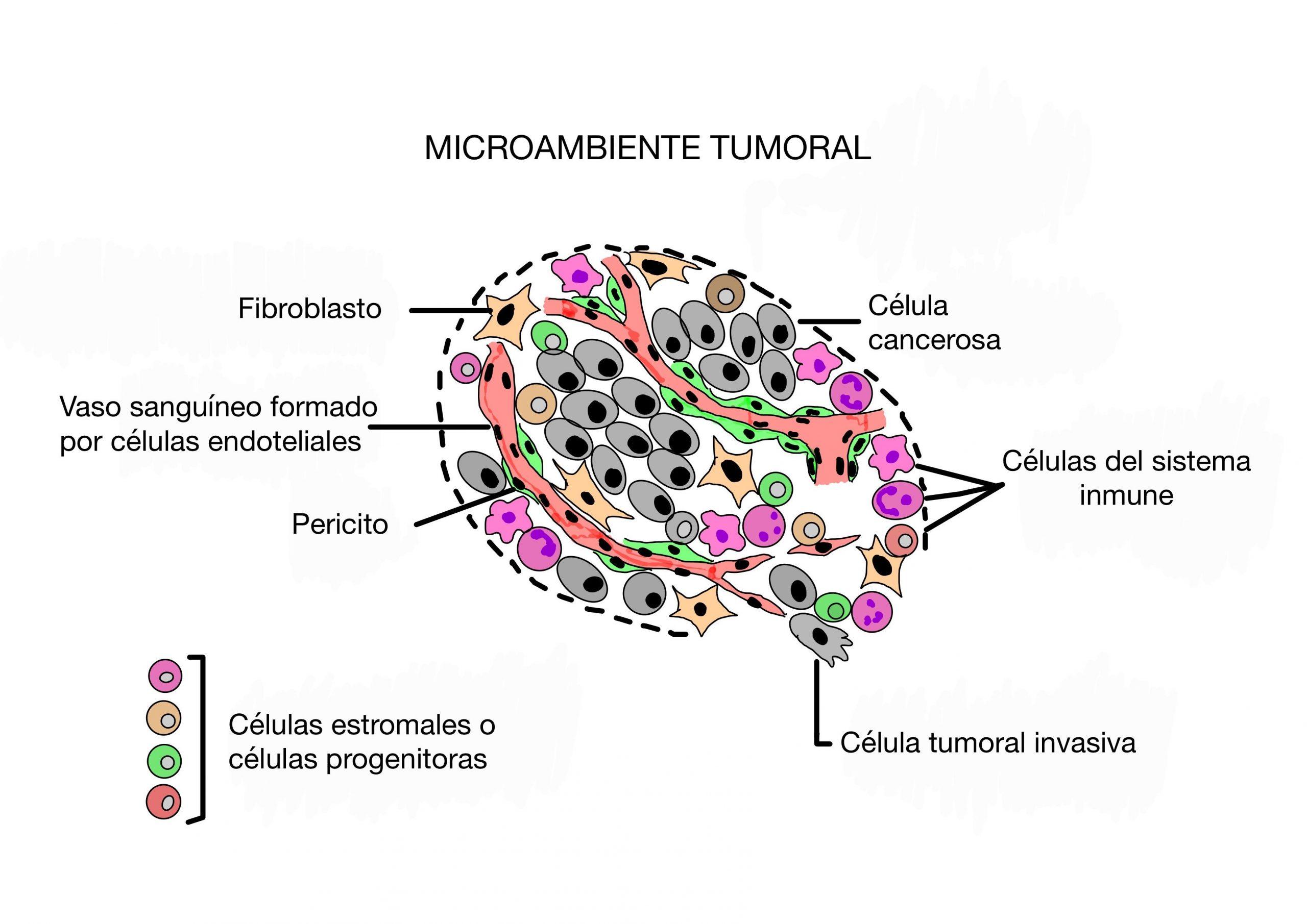 procesos comunes implicados en el cáncer