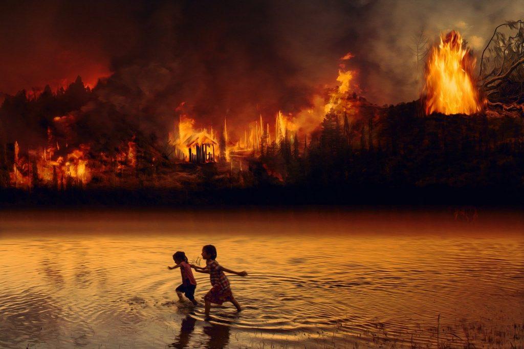 El amazonas se enfrenta a un enorme número de problemas, y cada año la presión que ejercen es más crítica. La tala masiva de árboles y los incendios provocados son solamente unos ejemplos que contribuyen a su destrucción.