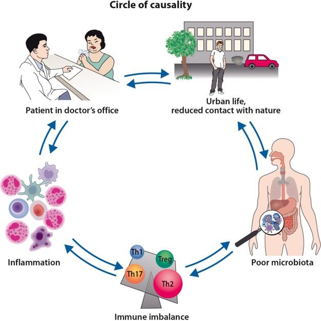 Desequilibrio de la tolerancia inmunológica a infecciones bacterianas