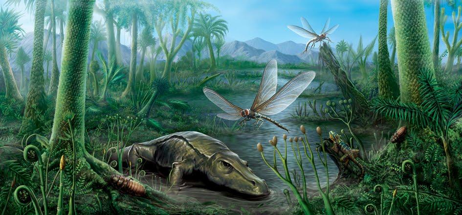 Tras analizar la evolución del oxígeno en nuestro planeta se pudo obtener explicaciones sobre el origen de los insectos gigantes del periodo Carbonifero.